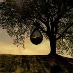 Можете да закачите Cocoon 1 в клоните на някое дърво и да си почивате